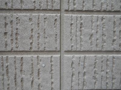 志木市で外壁の無料点検の様子