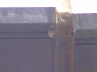 さいたま市北区 外壁塗装 屋根塗装 スーパーシャネツサーモSI