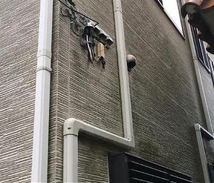 川口市 外壁 苔
